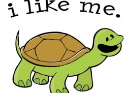 jd_-_turtle